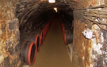 中世から伝わるワインの地下貯蔵室