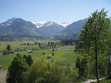 Blick vom Hotel Waldesruhe in Oberstdor in die wunderschöne Alpenwelt!