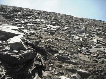 Bratschengelände par exellence: am Gratrücken des Kempsenkopf (3090m) hinauf zum Hohen Tenn (3368m)