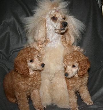 Archibald, Mama Julia und Bruder Aramis