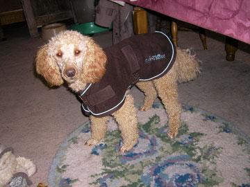 Ein neuer Mantel