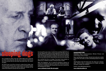 Sleeping Dogs flyer page 2