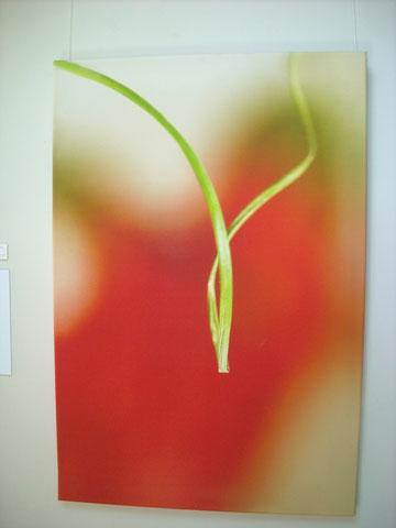 Virginidad.120x180cm. Impreso digital sobre lienzo. Sarai Aser.