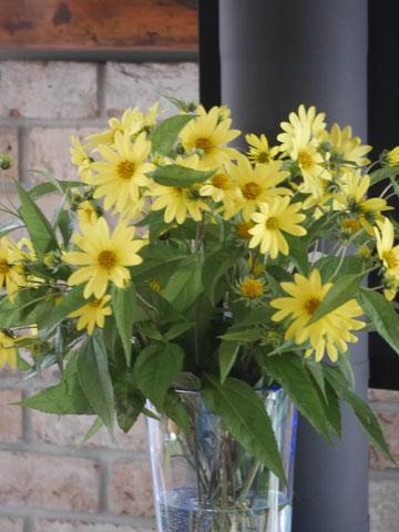 ヘレアンサスレモンクィーン。水切りが必要なお花ですね。