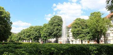 Blühende Kastanienbäume und Springbrunnen vor der Wohnanlage Ceciliengärten. Foto: Helga Karl