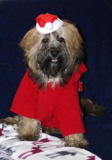 Weihnachtsmann Percy