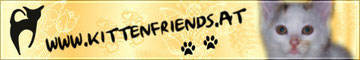 Kittenfriends
