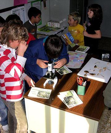 Lezione di microscopia in classe