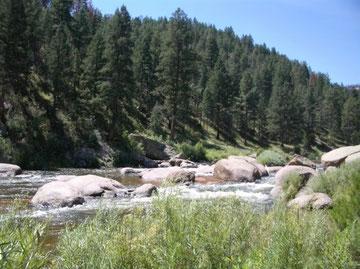 Cheesman Canyon