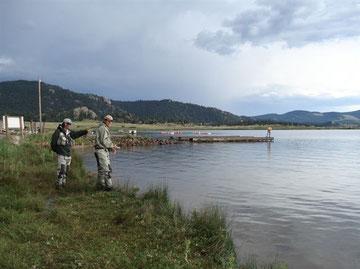 Elevenmile Reservoir