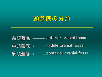 頭蓋底を下から見る頭頸部外科の分類と、頭蓋内から見た脳外科医の分類