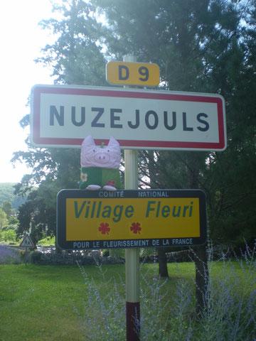 Frau Polly in Südfrankreich