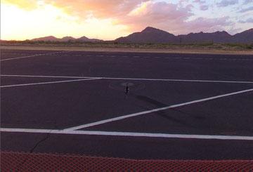 T-Rex blickt ins Abendrot in der Wüste von Arizona