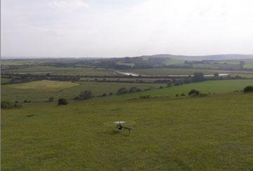 T-Rex in den Hügeln von England