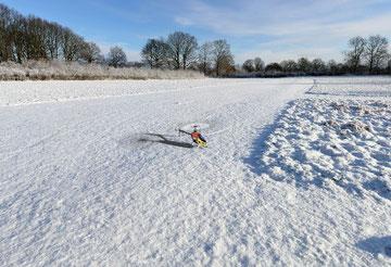 T-Rex im Schnee (aus aktuellem Anlass)