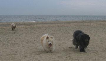 Strand, Wasser, Wellen und REGEN!!!