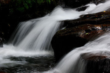 大滝からの流れ photo by 白鳥保美