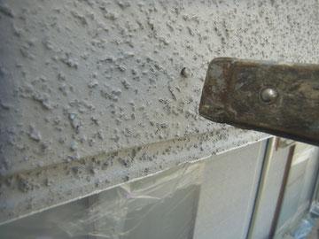 外壁の突出したクギをハンマーにて打ち込んでいる様子。