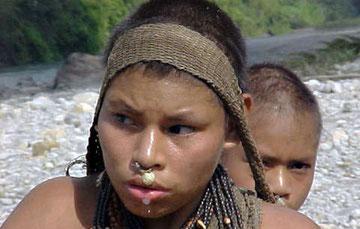 Hay al menos 15 pueblos indígenas aislados en Perú. © Anon/ Survival