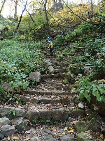 下山ルートの階段はここだけ。前に来た時にオコジョが飛び回っていたのを思い出す。
