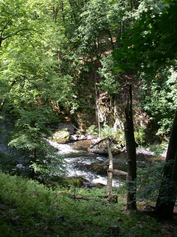 Das wilde Bodetal zwischen Treseburg und Thale