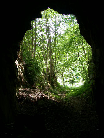 Im Diabas-Tunnel, 2004