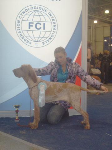 """Эва - лучший щенок породы """"РОССИИ-2010""""! Эвочке 8 месяцев."""