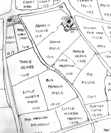 1843 Tithe Map of Yardley (extract)