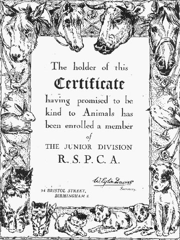 A membership certificate
