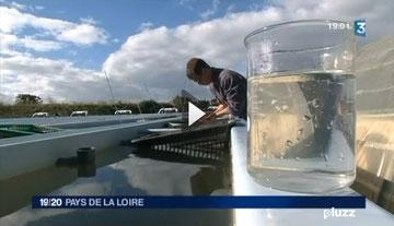 France 3 journal 19/20 du samedi 2 février 2013