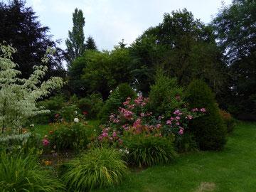 Le massif des roses Meilland