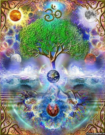 Weg des Herzens - die neue Menschheit