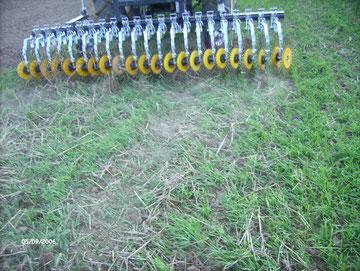 """Un essai sur de l'engrais vert - l'étrille rotative ne forme pas de """"tas""""."""
