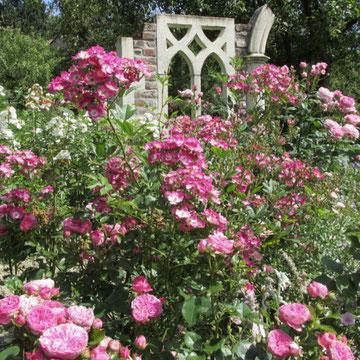Ruine mit den Rosen Mozart und Baronesse