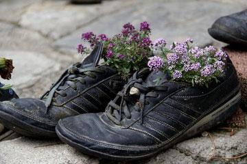 Alte Schuhe als Blumentopf