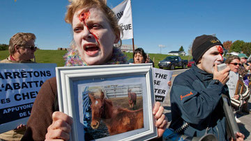 Animal-rights protestors demonstrate against the slaughtering of horses in front of a processing plant in Massueville, Que., Monday, Oct. 4, 2010. (Paul Chiasson / THE CANADIAN PRESS)