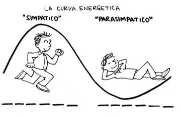 Curva Energetica