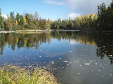 O`Sullivan Lake/Ontario