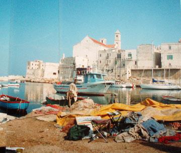 Fischerboote in Giovinazzo