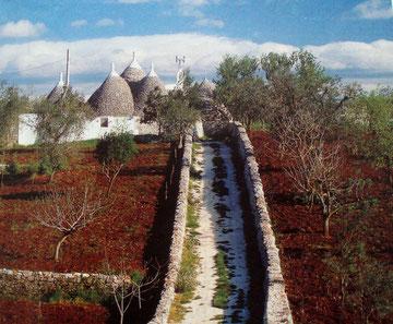 ein Bauernhof in der Nähe von Alberobello