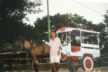 """Das """"Horse-Car"""" ist die einzige Beförderungsmöglichkeit auf Gili Air, Gili Meno und Gili Trawangan, da es keine Straßen gibt"""