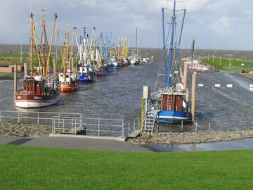 Kutterhafen in Dorum-Neufeld