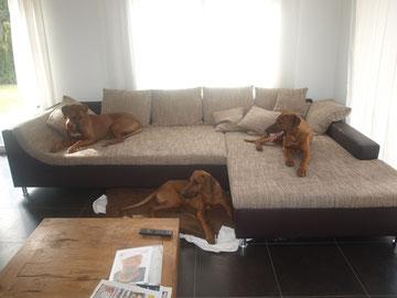 Rayha, Zina und Dayo