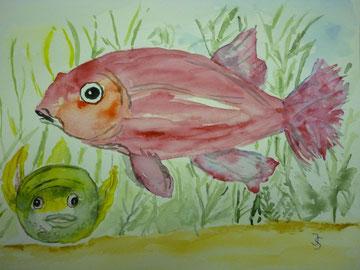 Mein Aquarium, Juli 2012
