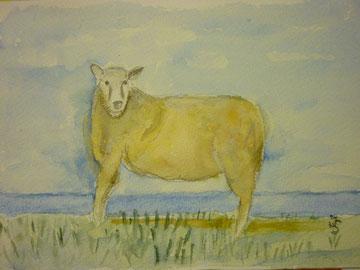 das merkwürdige Schaf von Brodersby 3/2013