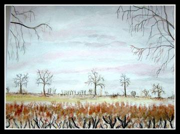 Paysage région de Malmédy, aquarelle encre de Chine, D.Petit
