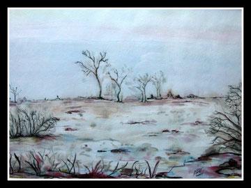 Vue de la Fagne, aquarelle encre de Chine.D.Petit