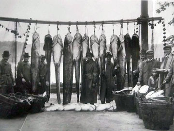 1930iger Donau