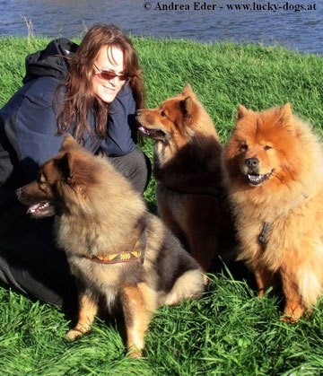 Andrea Eder mit ihren 3 eigenen Hunden (Copyright: Hundeschule LUCKY DOGS)