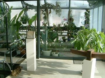 1. Stock: Einsicht aus dem Wohnzimmer auf den integrierten Balkon.